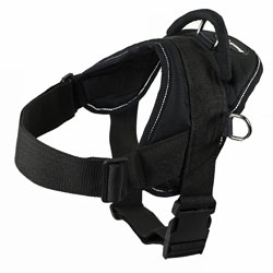 Dean-and-Tyler-DT-Dog-Harness